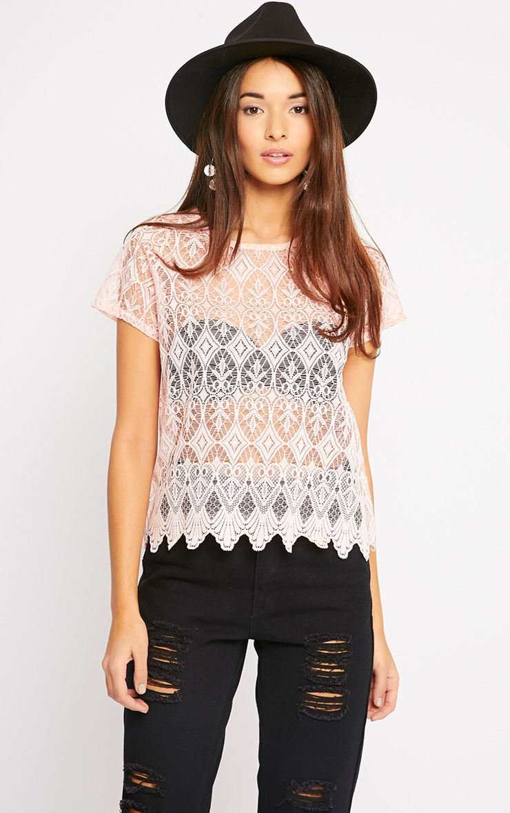 Nina Pink Scallop Trim Lace Top  4
