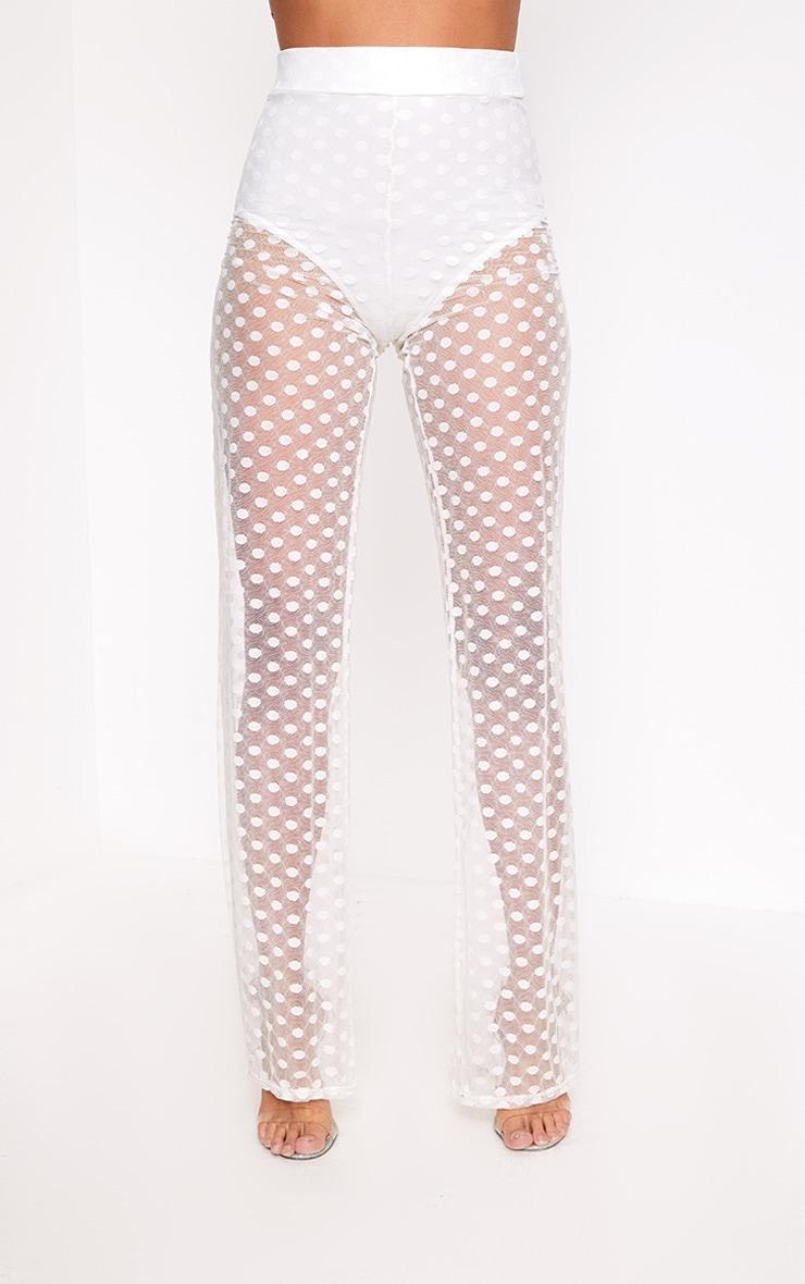 Ivory Sheer Spot Wide Leg Trousers  2