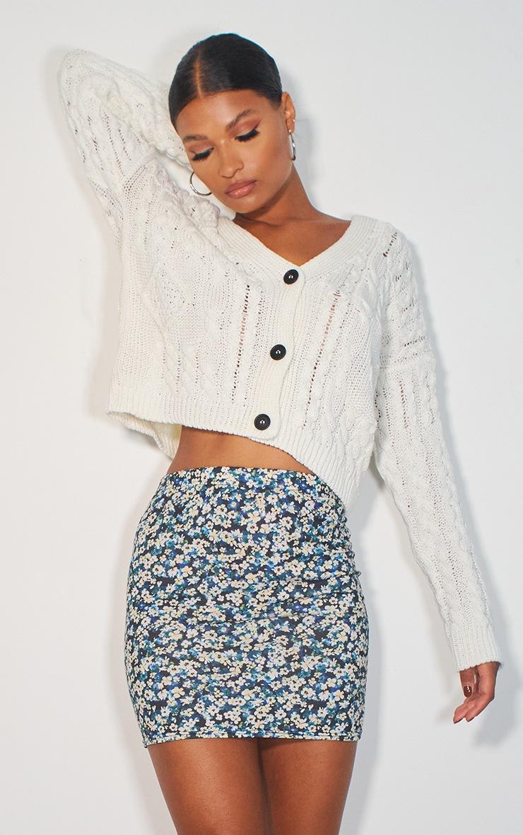 Blue Floral Basic Printed Mini Skirt 4