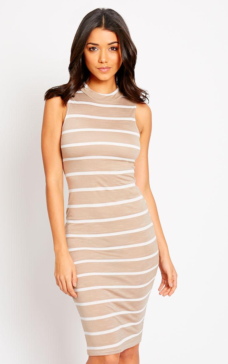 Santo Stone Turtle Neck Stripe Dress 7