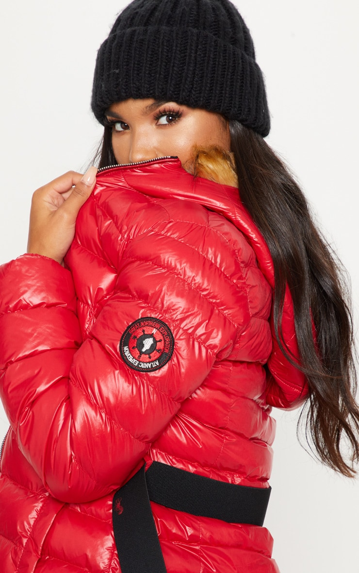 Red Belted Puffer  5