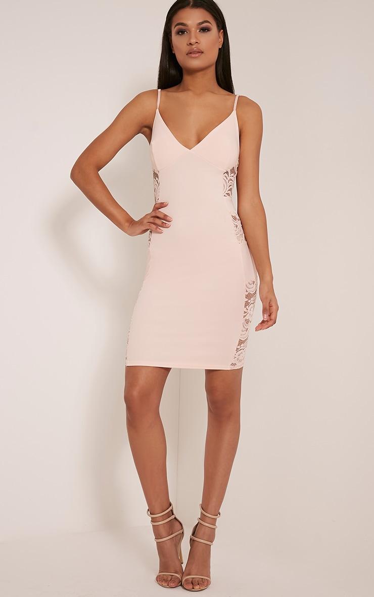 Adina Blush Lace Insert Mini Dress 4