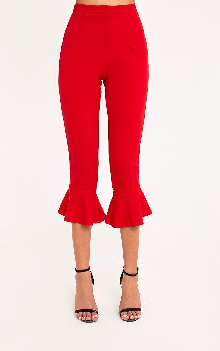 Red Flare Hem Trouser 2
