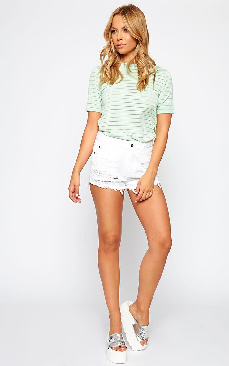 Elodie Mint Stripe Burnout T-Shirt 3
