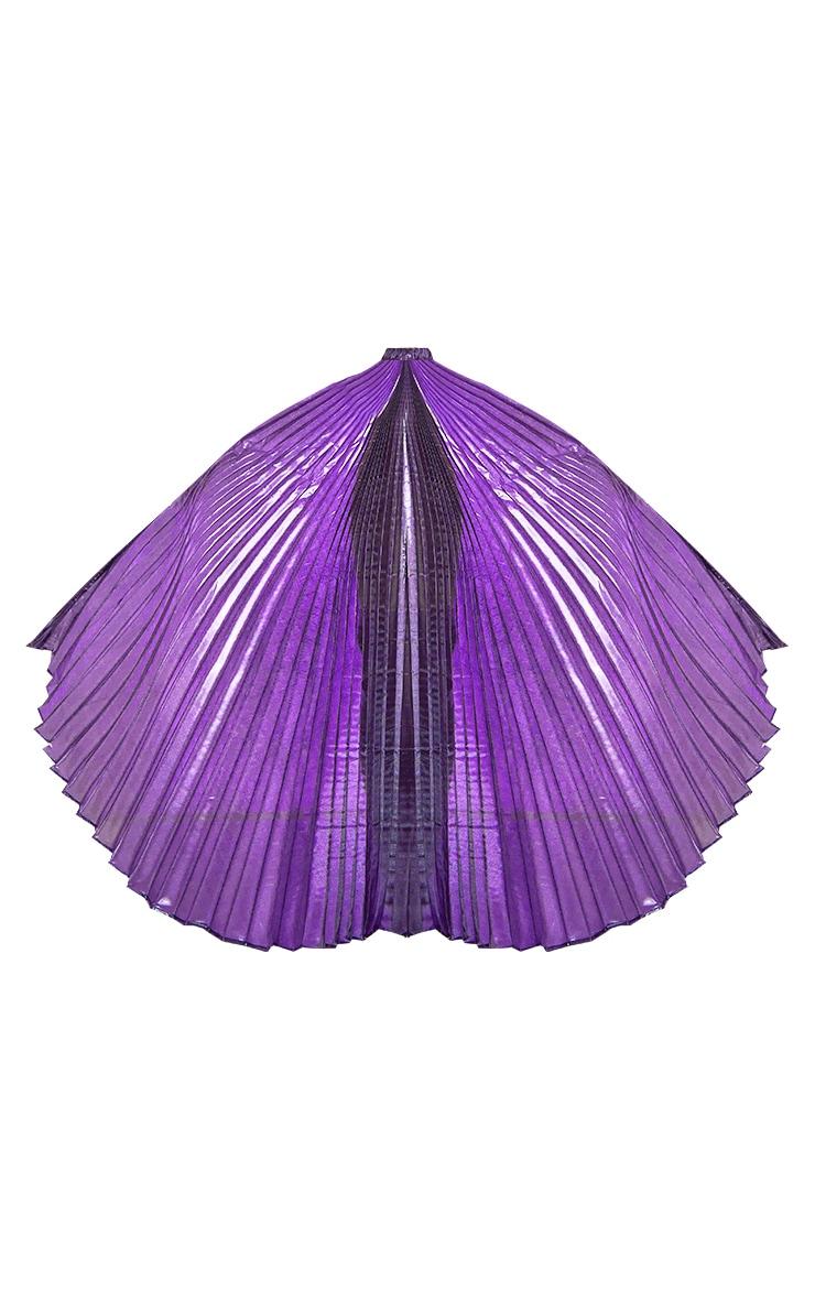 Ailes violettes irisées 5