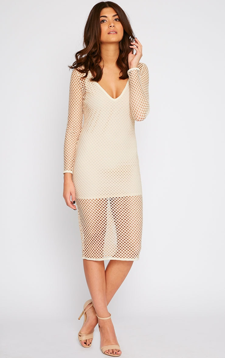Karis Beige Netted Mesh Midi Dress 4