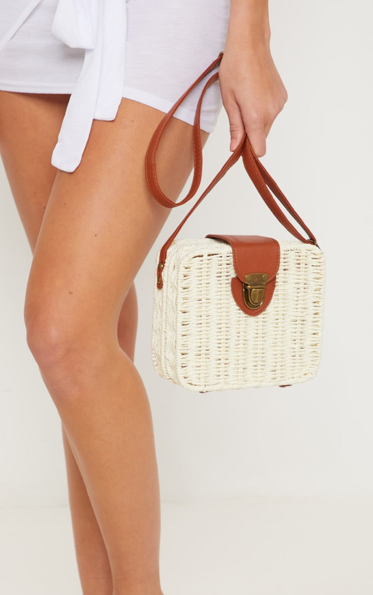 Straw Box Cross Body Bag