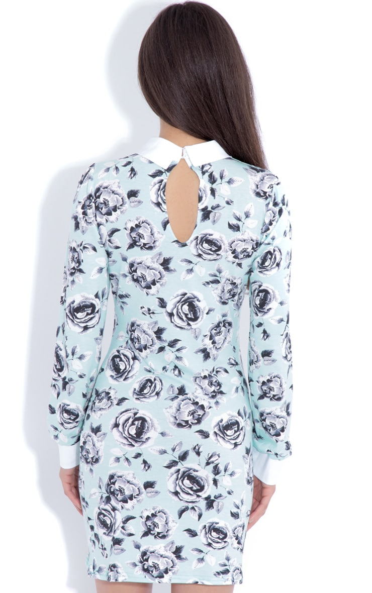 Demi Mint Floral Collar Dress 2