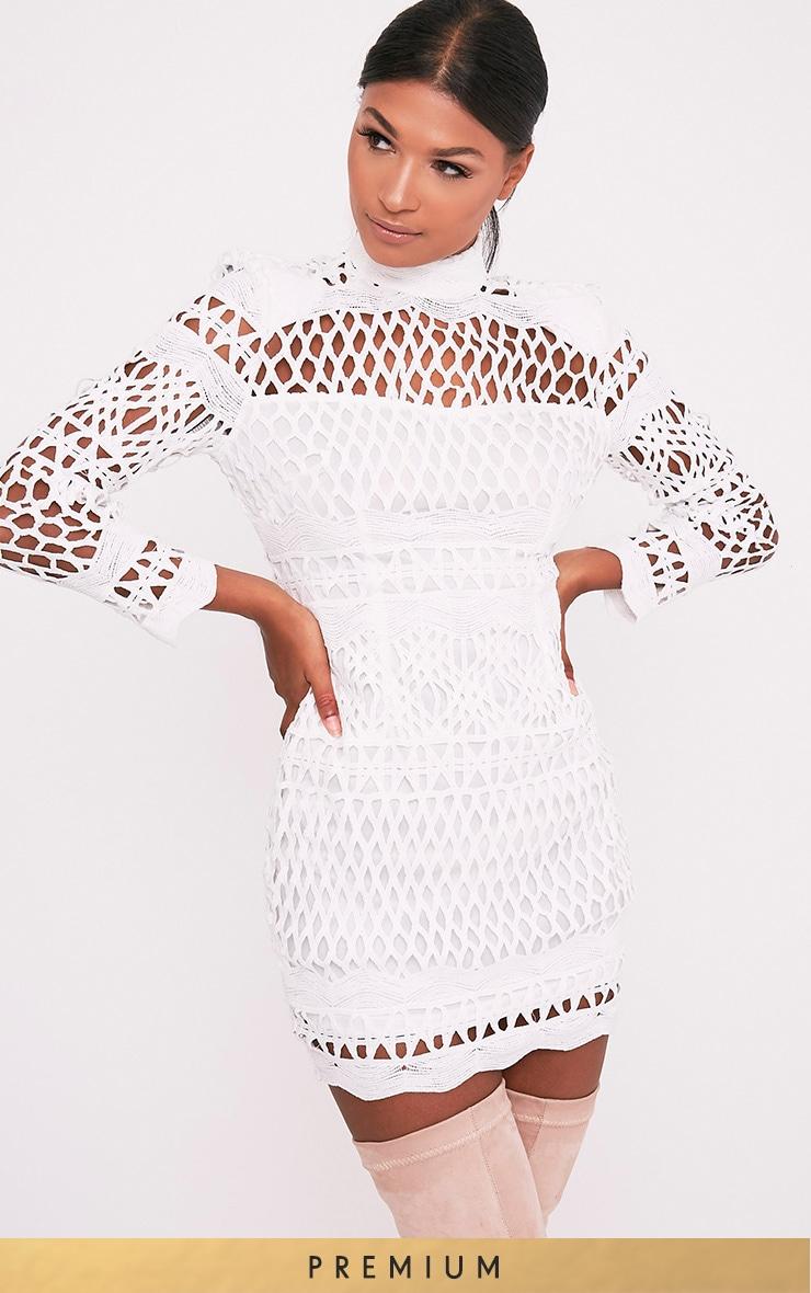 Lexi White Crochet Lace Long Sleeve Bodycon Dress 1