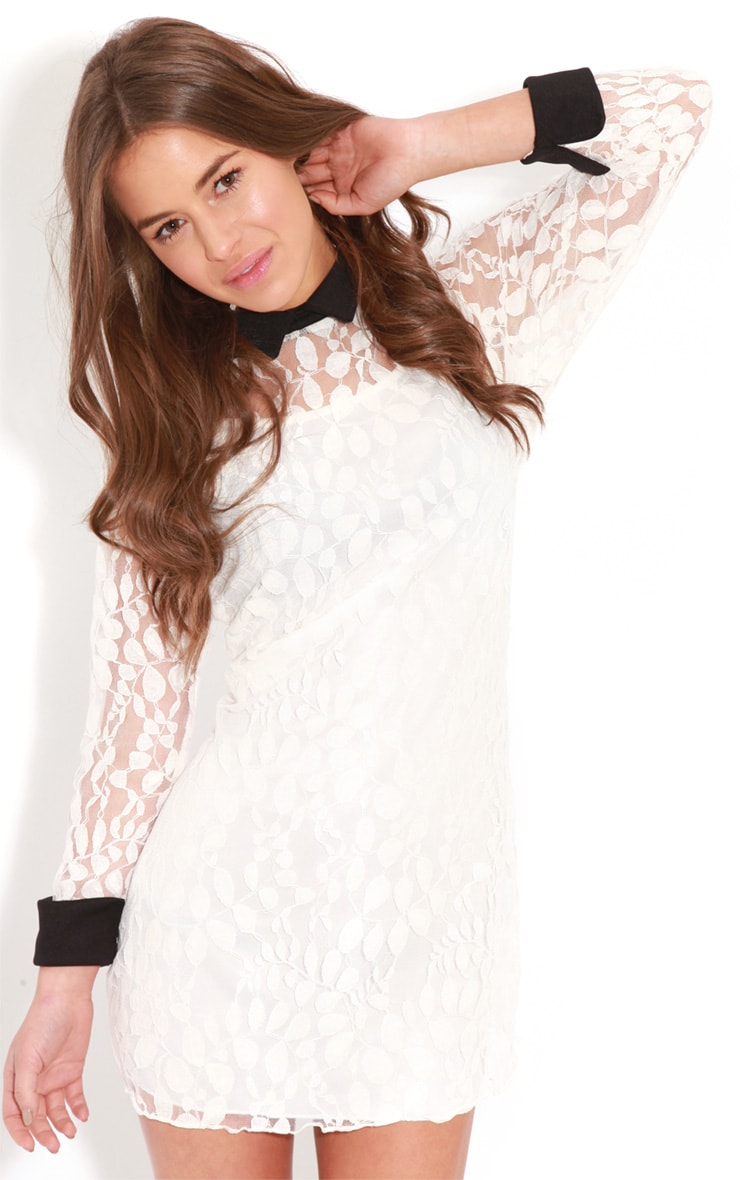 Reese White Lace Collar Dress 4
