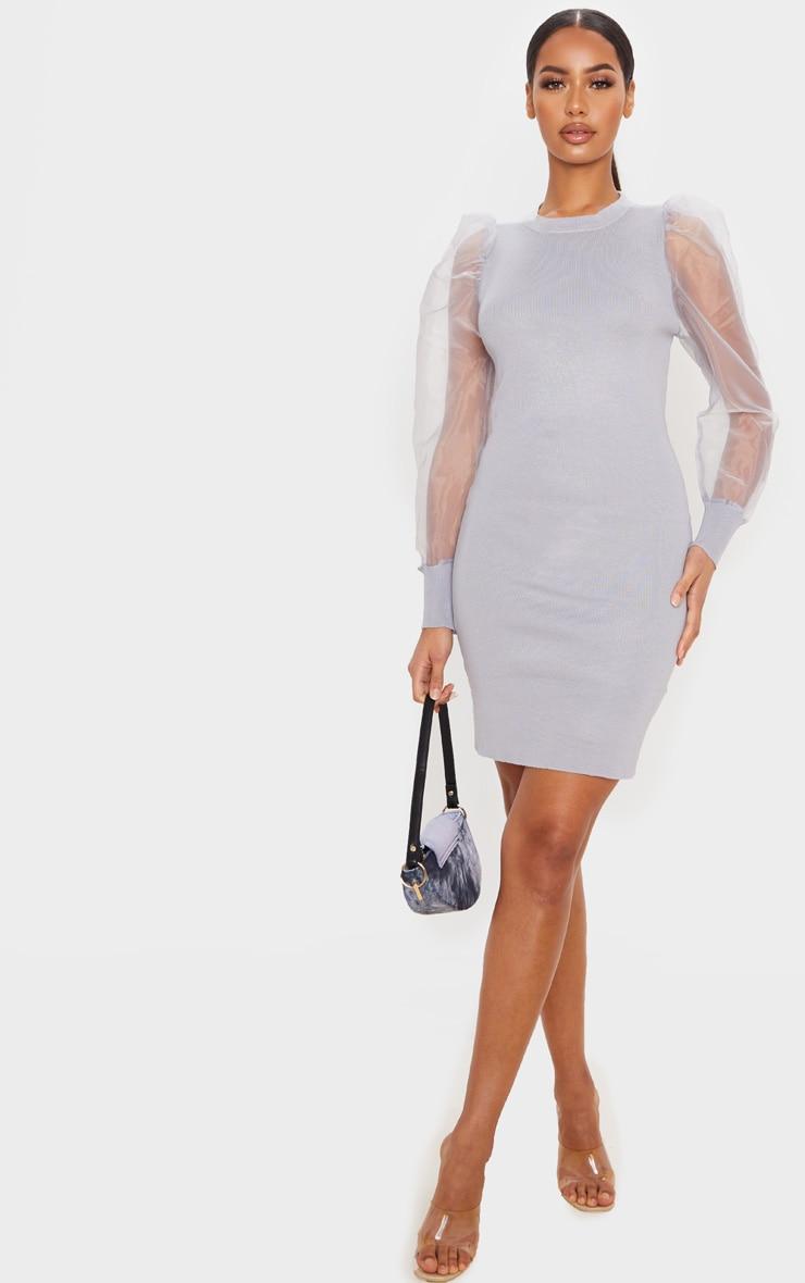 Grey Organza Puff Sleeve Dress 1