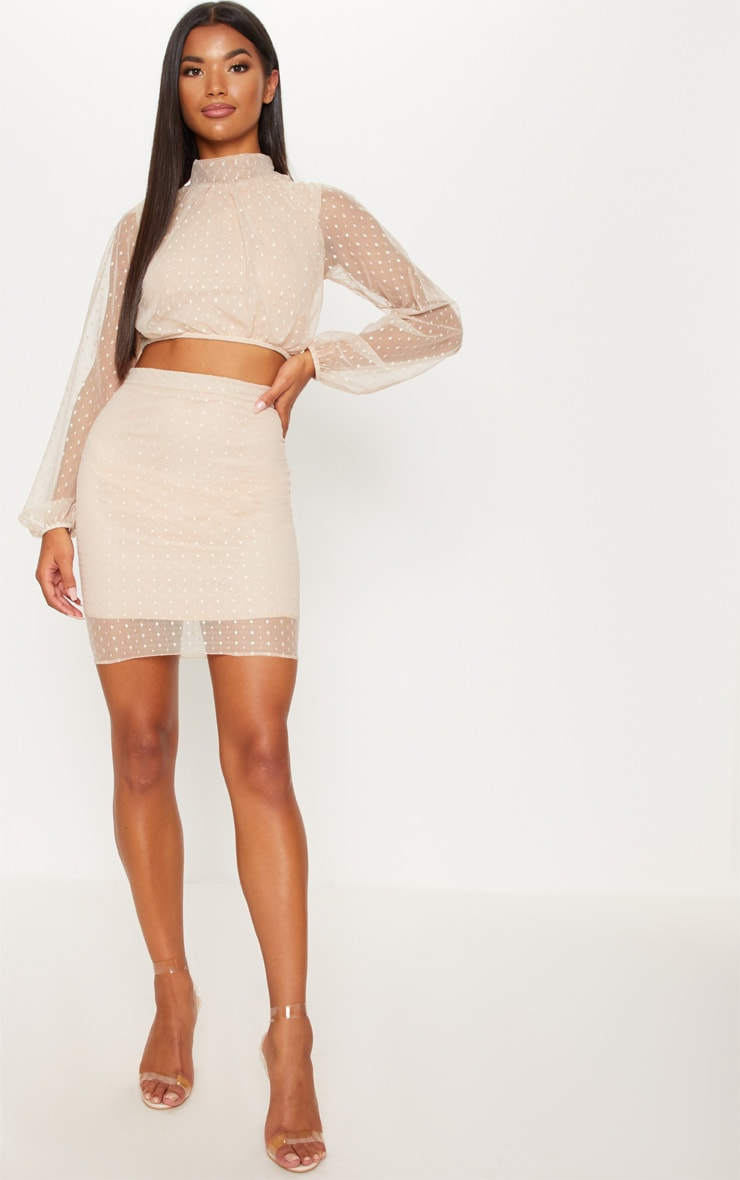 Nude Dobby Mesh High Neck Ruched Crop Top