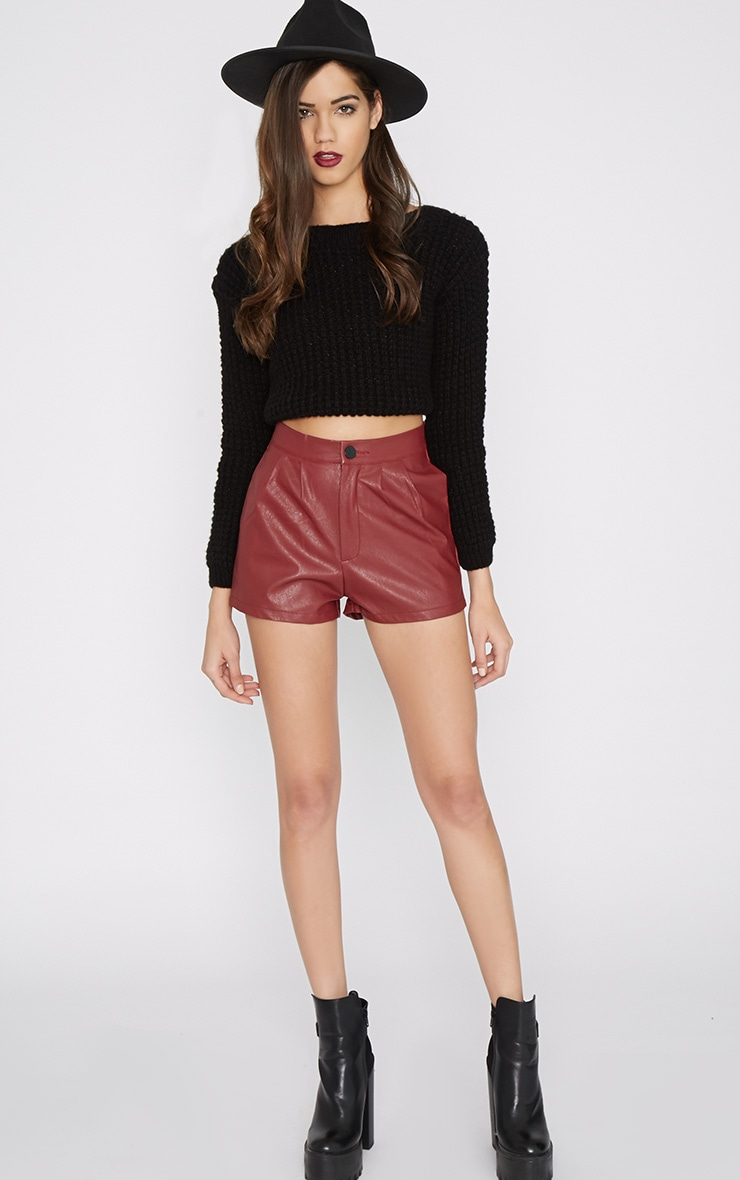Misha Wine Leather Short 1