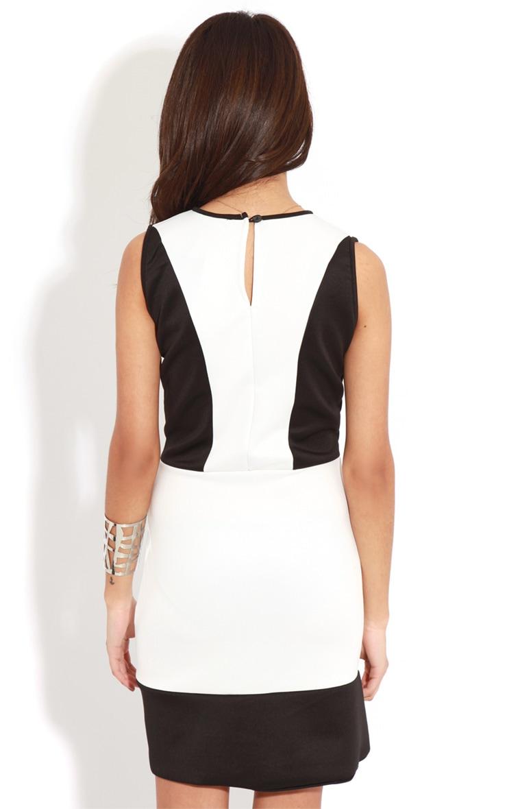 Reanne Monochrome Panelled Wrapover Dress 2