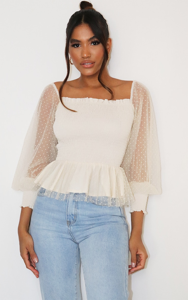 Nude Shirred Dobby Mesh Bardot Long Sleeve Top 1