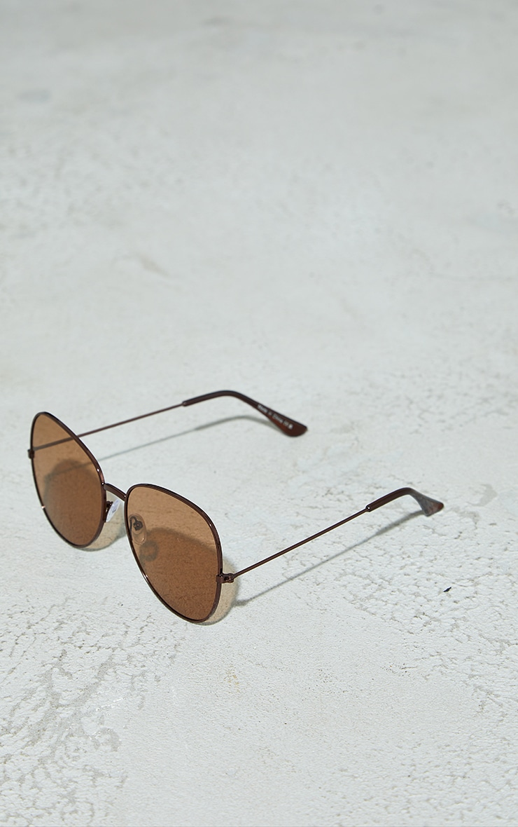 Brown Lens Oversized Round Sunglasses 3