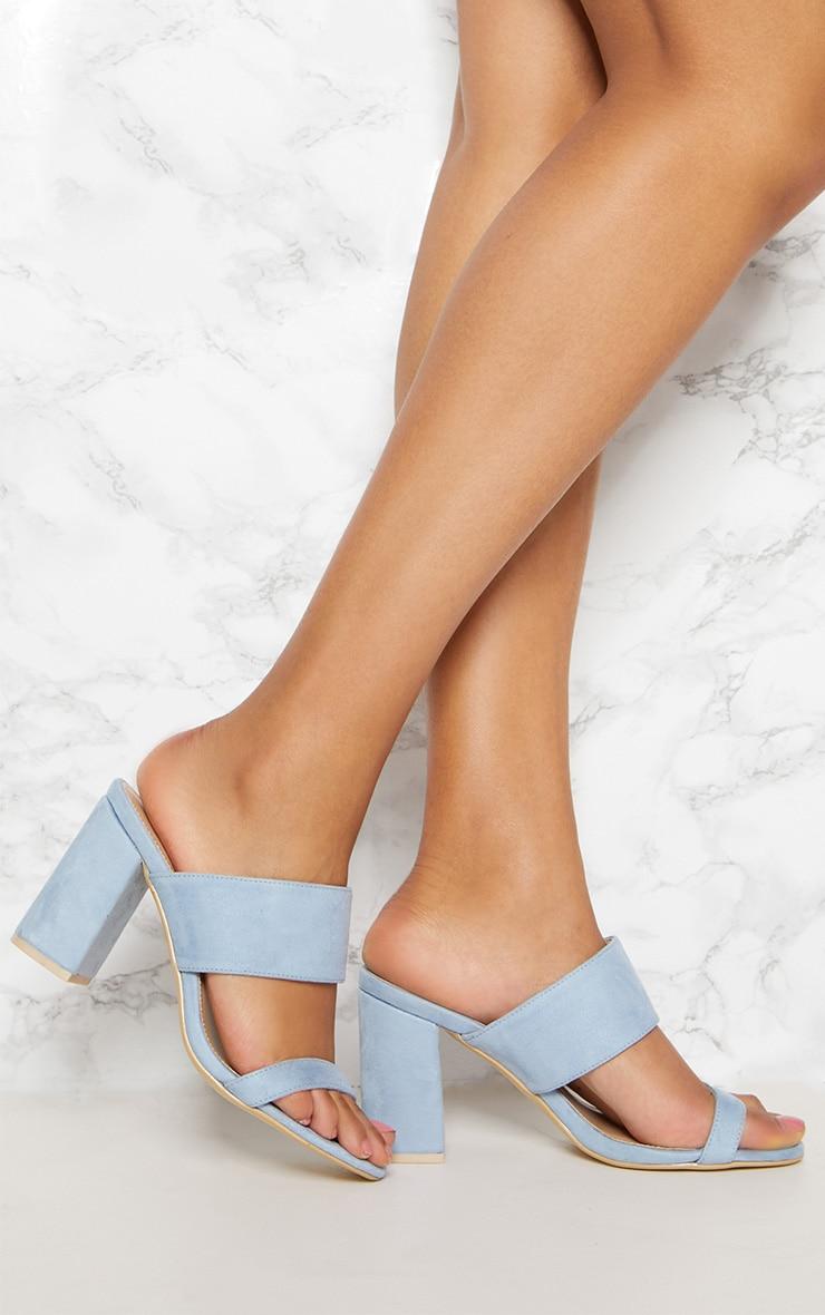 Blue Twin Strap Block Heel Sandal