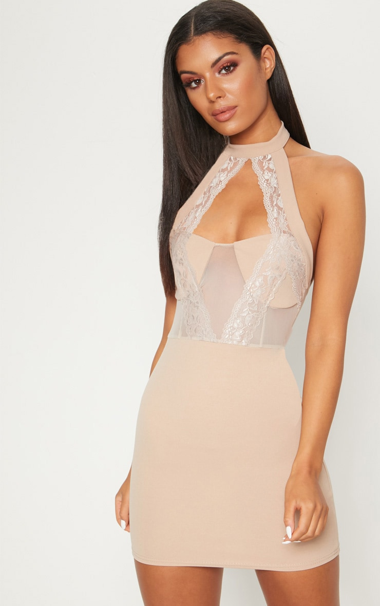 stone lace trim high neck sheer top bodycon dress