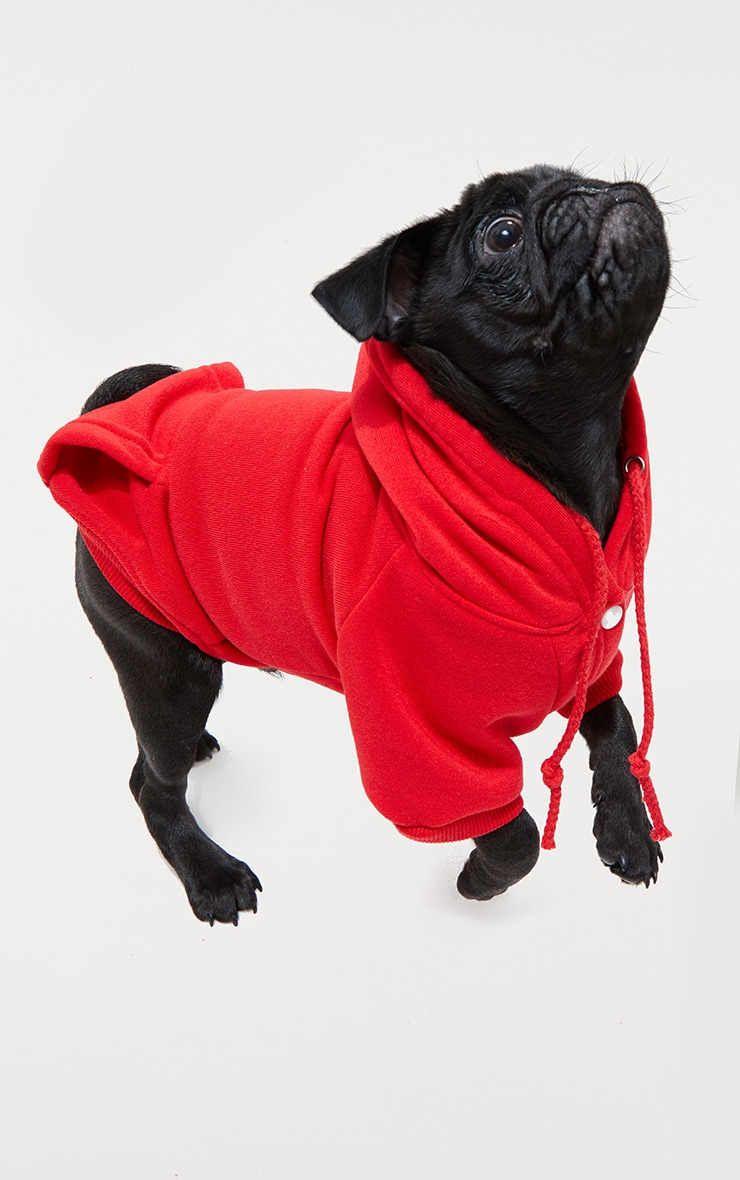 Red Doggy Hoodie  2