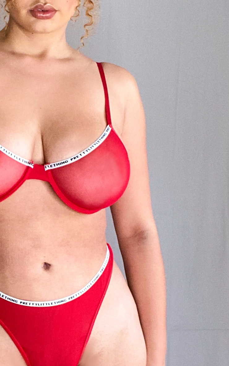 PRETTYLITTLETHING Plus Red Underwired Mesh Lingerie Set 4