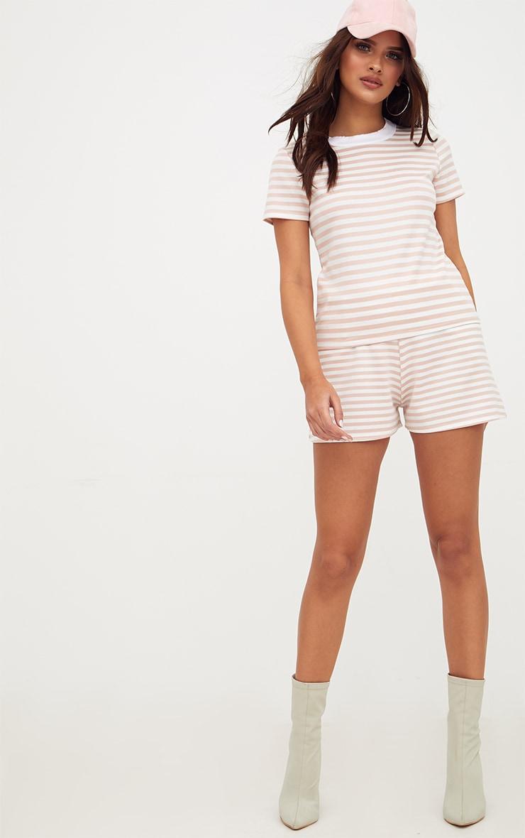 Nude Scuba Stripe Shorts 5