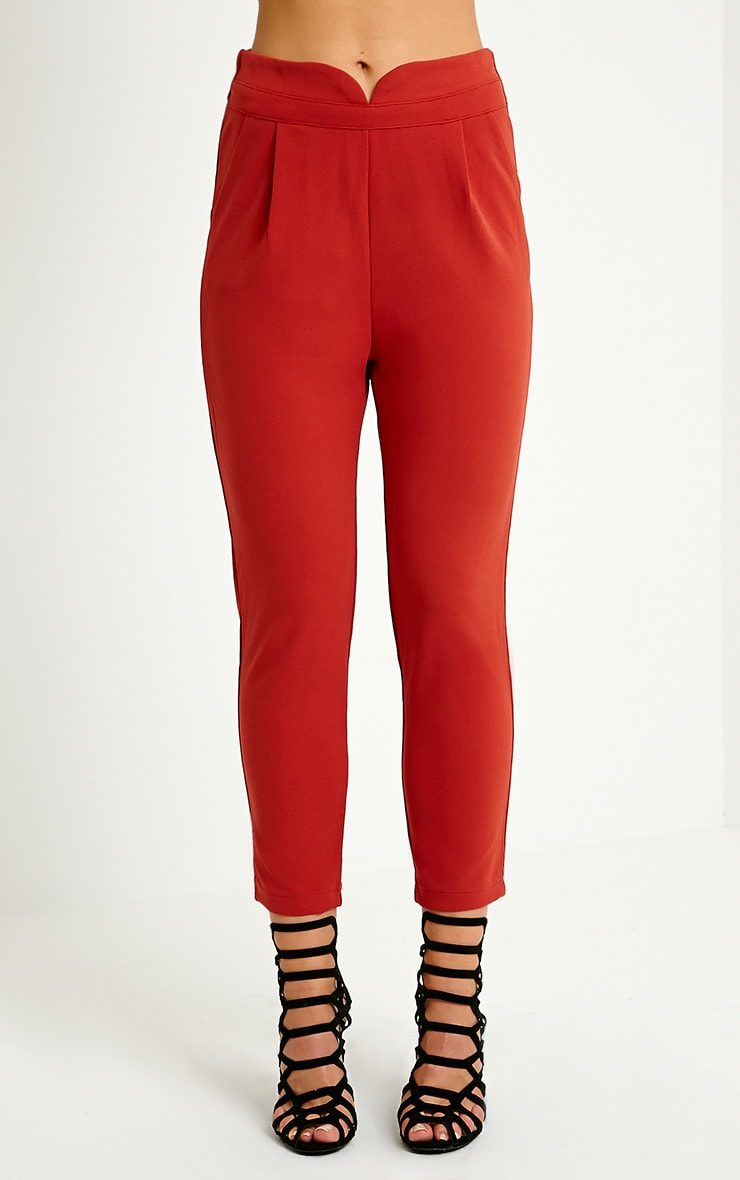 Neri Rust Notch Front Trousers 2
