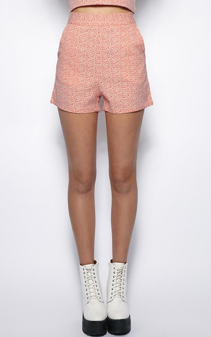 Shannon Pink Floral Print High Waist Shorts  4