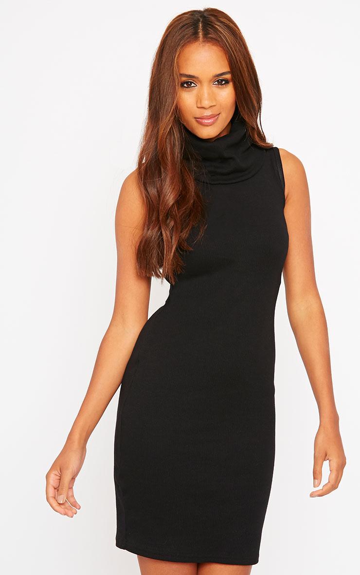 Faybhian Black Turtle Neck Dress 1