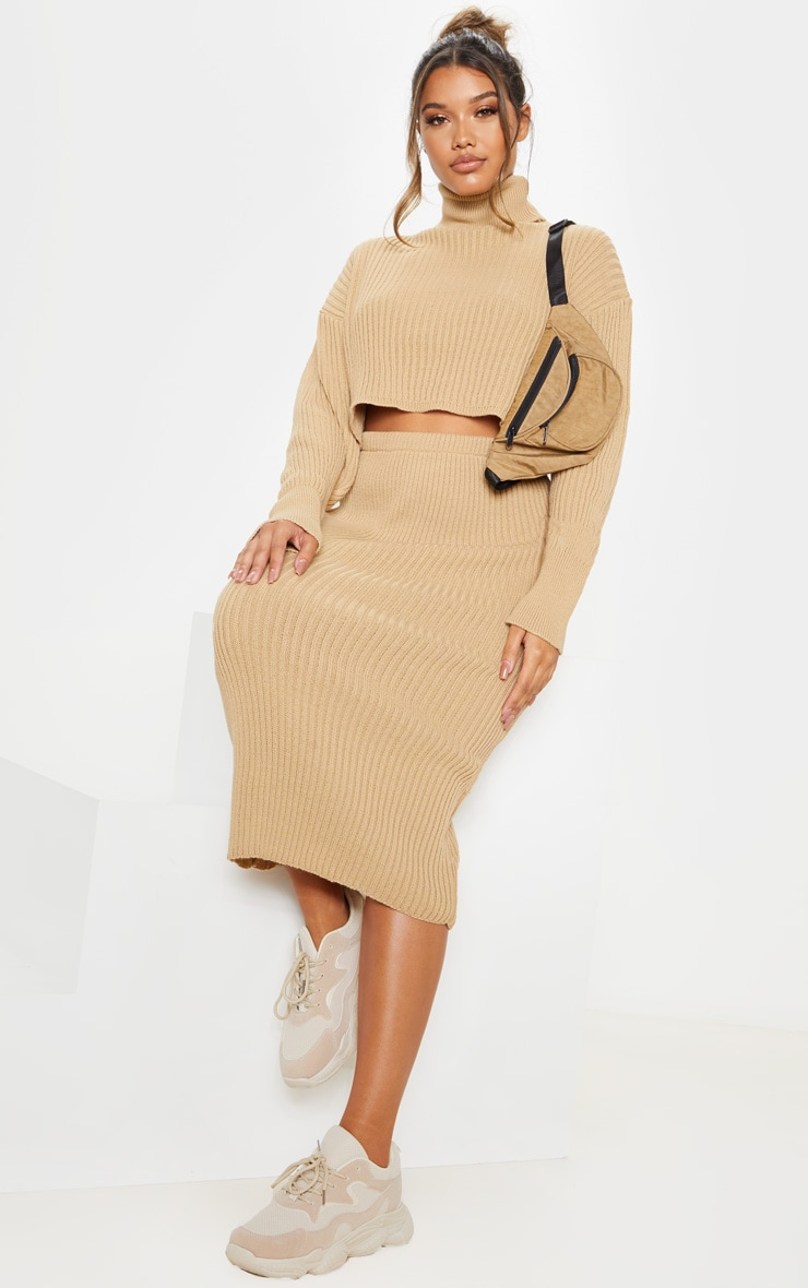 Stone Ribbed Knitted High Neck Crop Top
