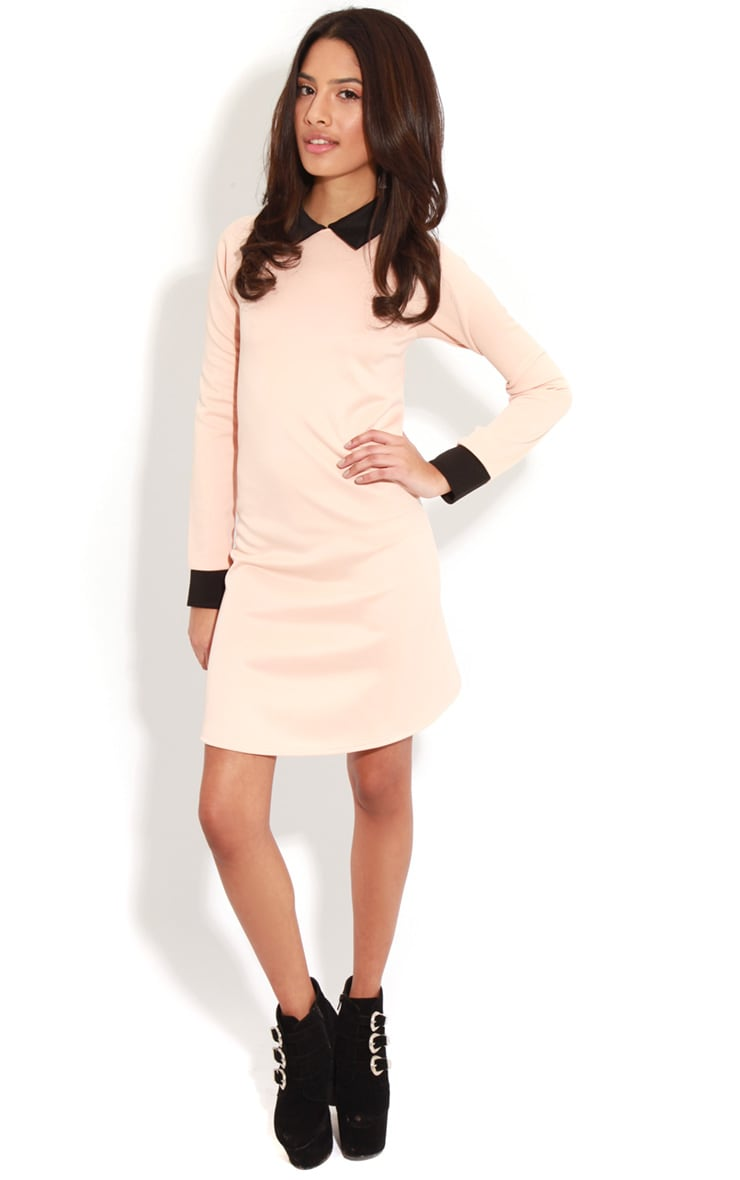 Evelyn Nude Long Sleeved Collar Dress 3