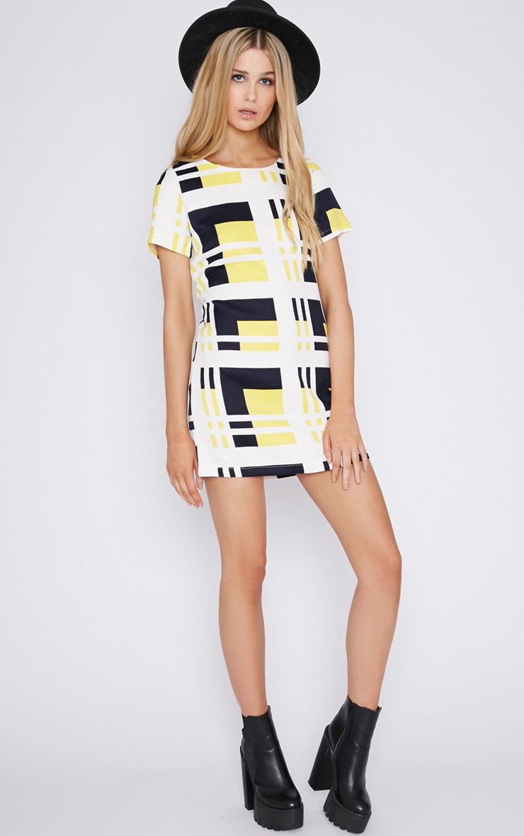 Karina Abstract Print Quilted Shift Dress 5