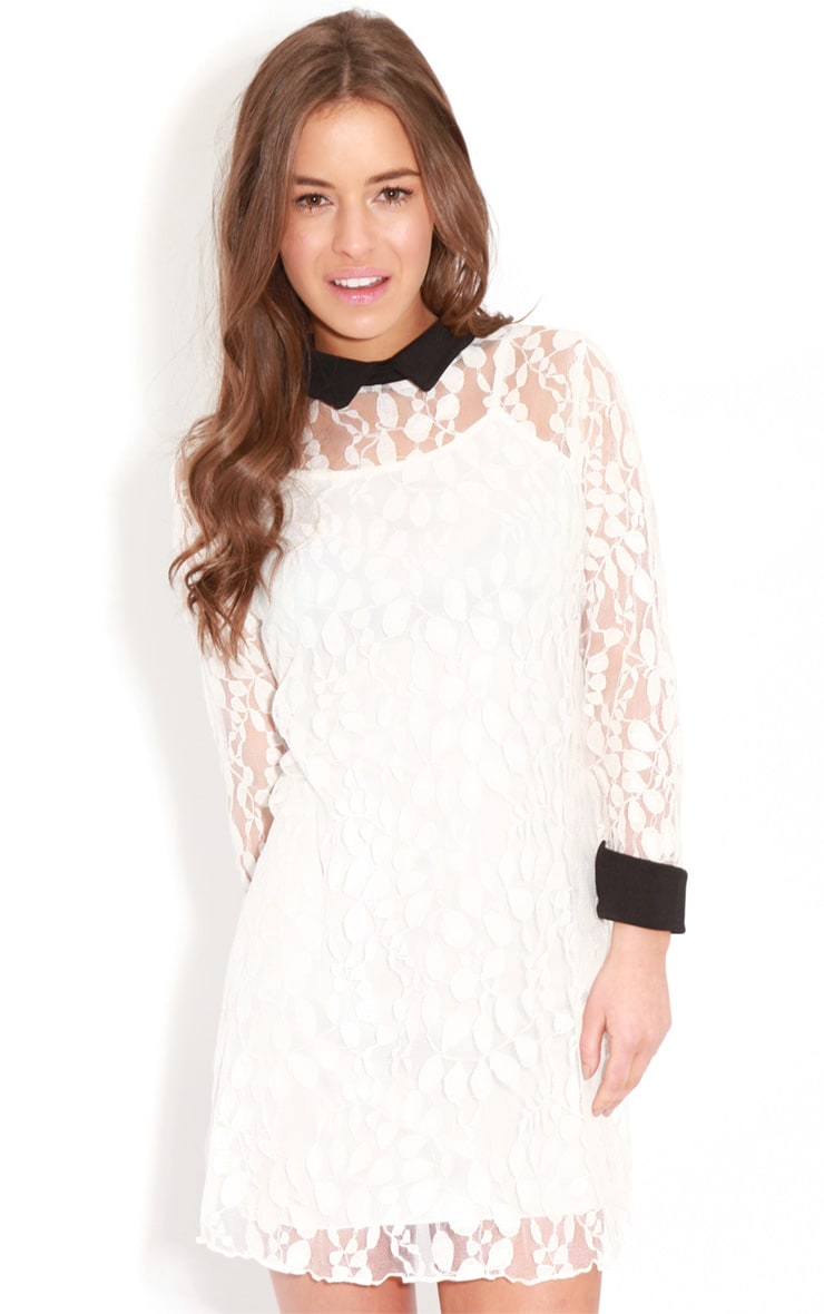 Reese White Lace Collar Dress 1