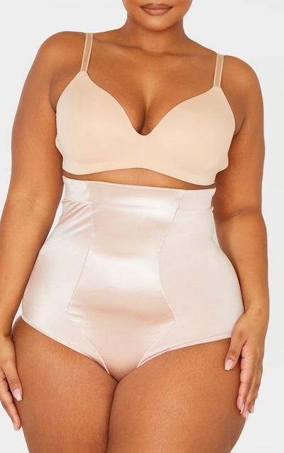 Plus Nude Satin Panelled High Waist Control Shapewear Brief