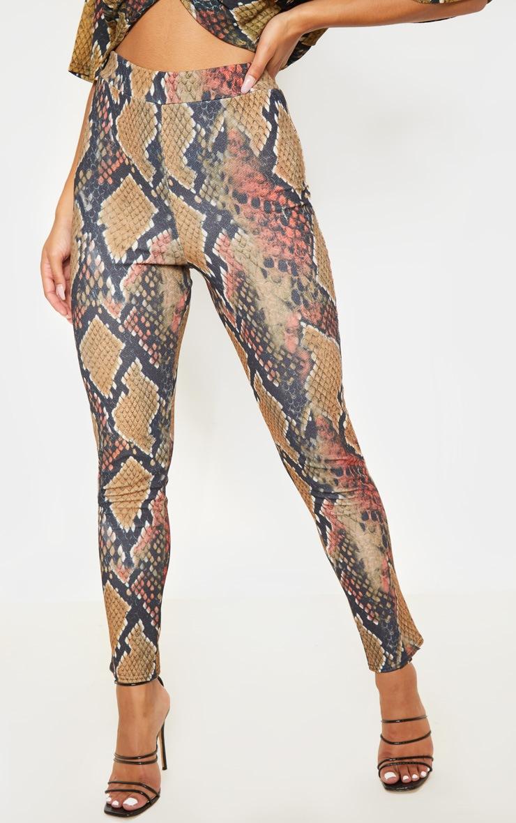 Rust Snake Print Skinny Pants  2