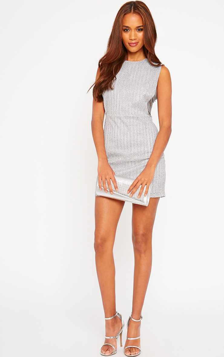 Ezri Grey Fringe Side Mini Dress 3