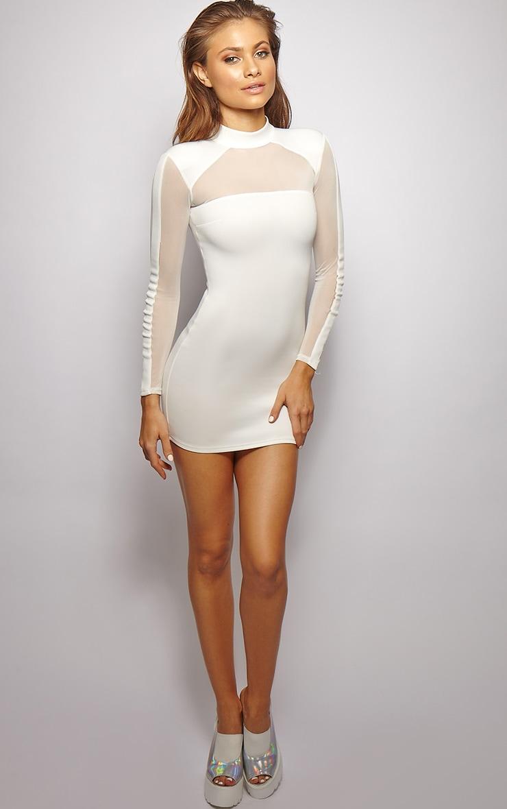 Xara White Structured Mesh Panel Dress 3