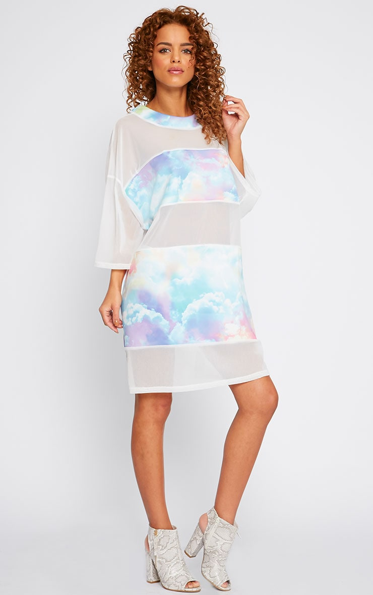 Yakira Cloud Print Mesh Panel Dress 4
