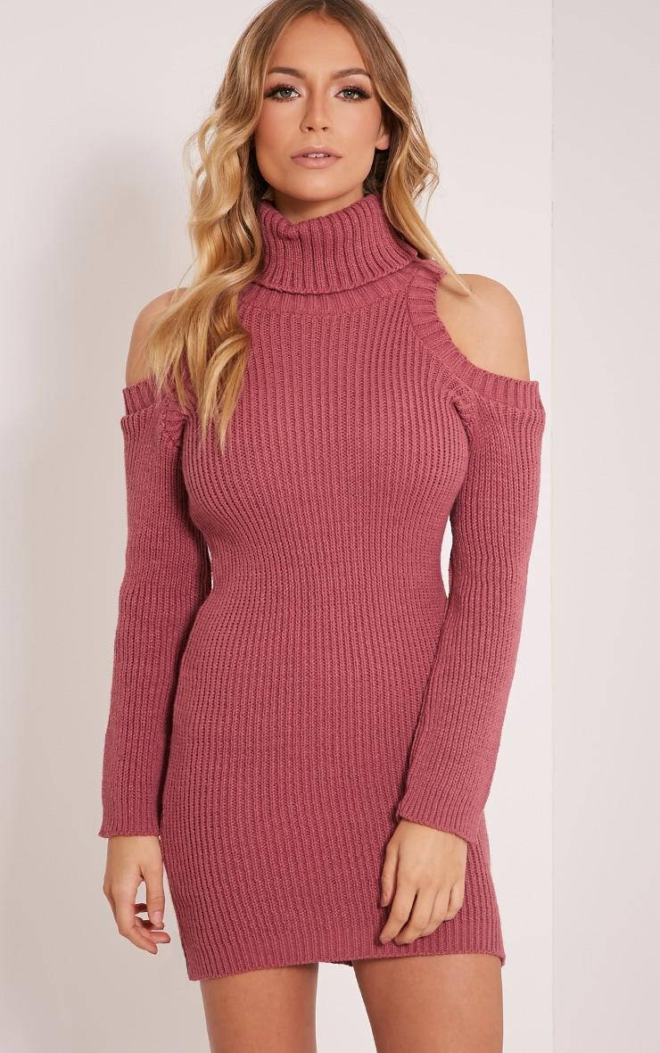 Talisma Rose Cold Shoulder Jumper Dress 1