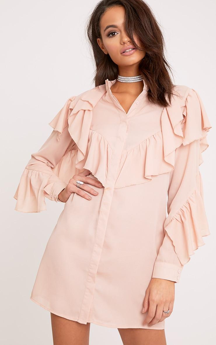 Jezmeena Dusty Pink Frill Detail Shirt Dress  1