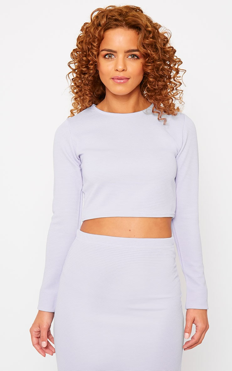 Britney Lilac Ribbed Crop Top 4