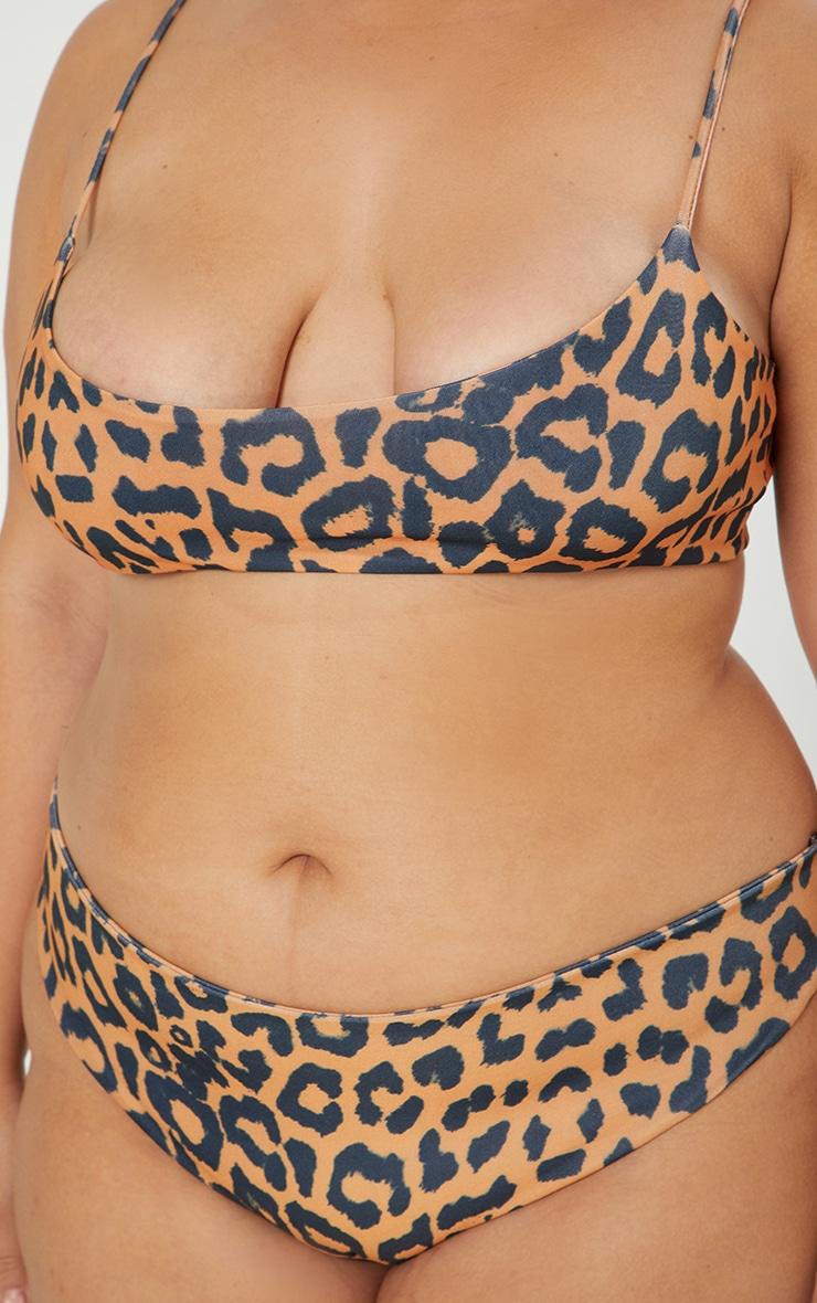 Plus Orange Cheetah Cheeky Bum Bikini Bottoms 6