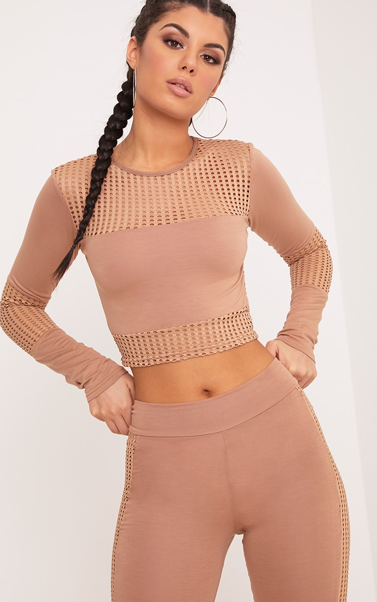 Wanita Camel Fishnet Panel Long Sleeve Crop Top 1