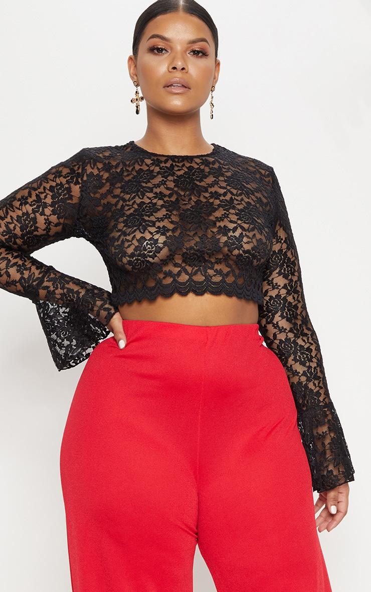 Plus Black Sheer Lace Crop Top 1
