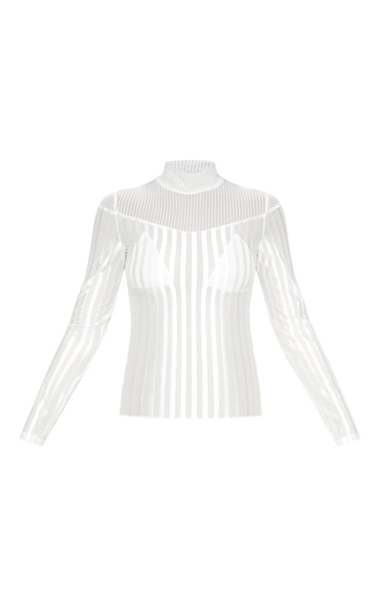 White Velvet Stripe Sheer Long Sleeve Top 3