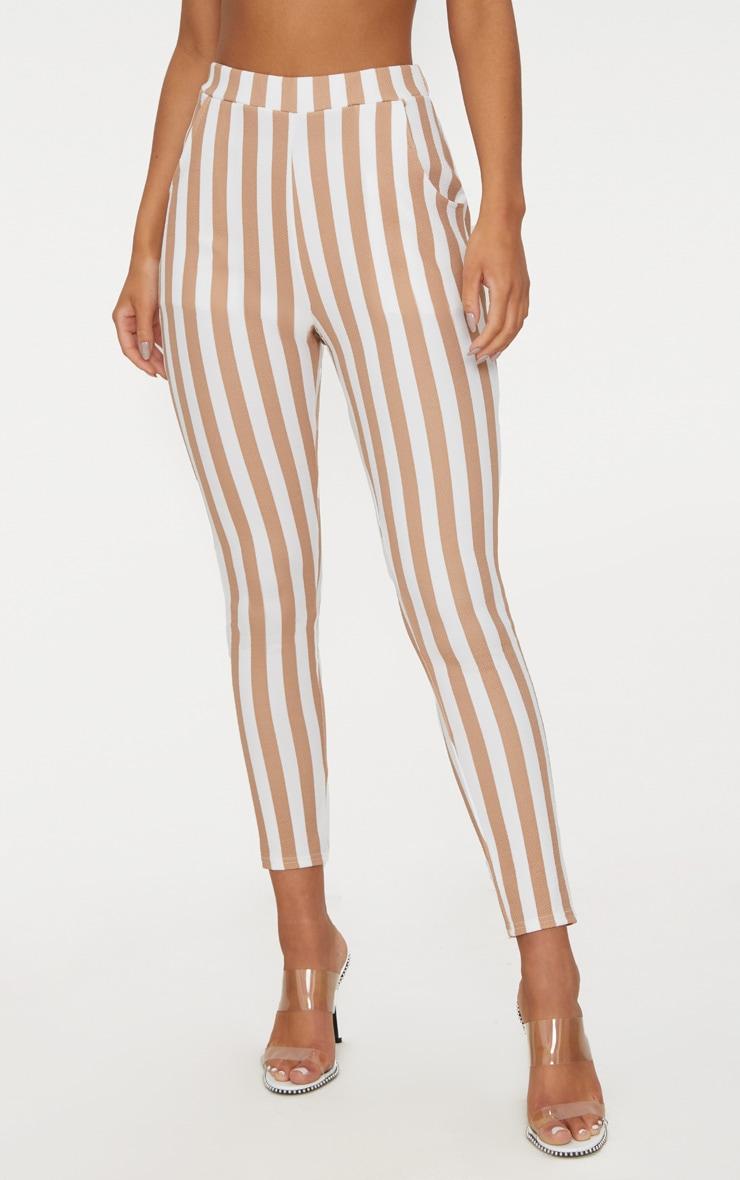 Stone Stripe Skinny Trouser 2