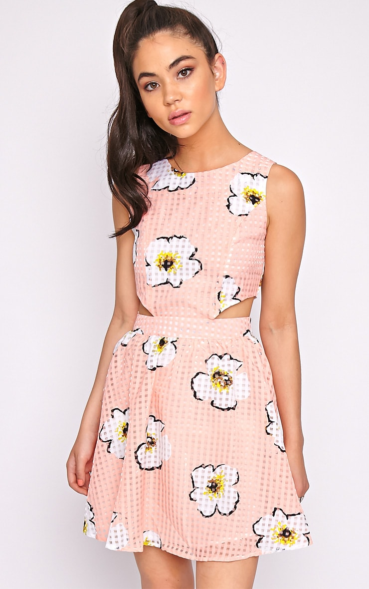 Kyra Pink Check Floral Cut Out Skater Dress 4