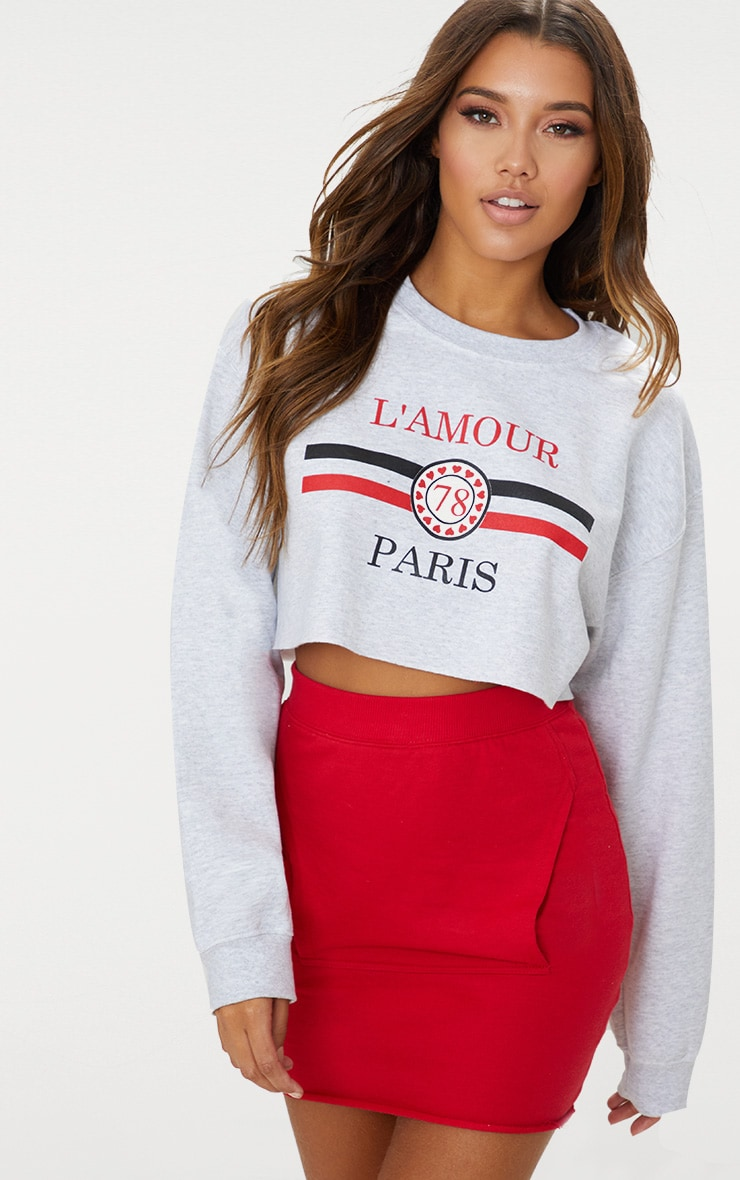 Grey Lamour Cropped Sweater  1