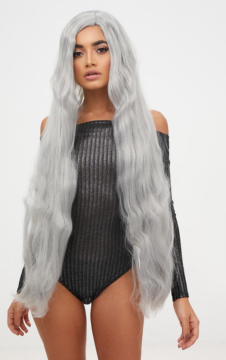 Halloween Grey Extra Long Wig 1