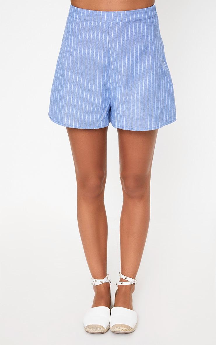 Blue Pinstripe Shorts 2