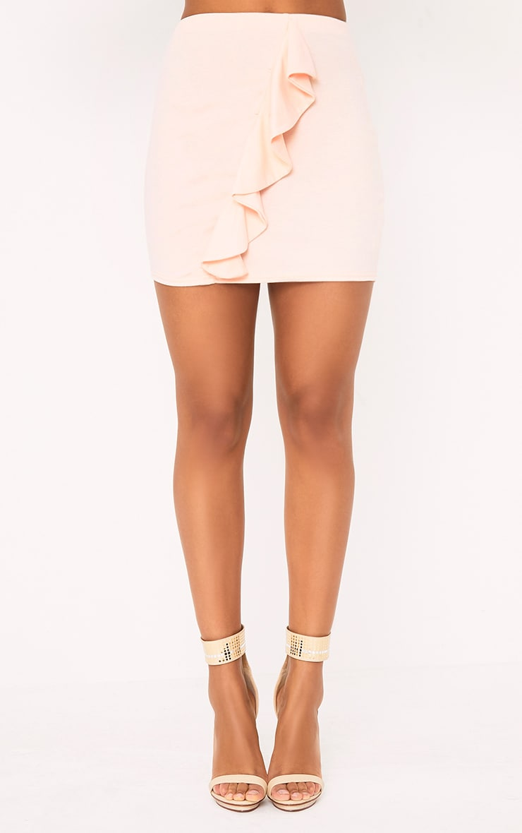 Blush Ruffle Mini Skirt 2